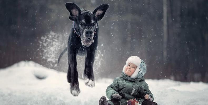 За малките деца и техните големи кучета (част 2)