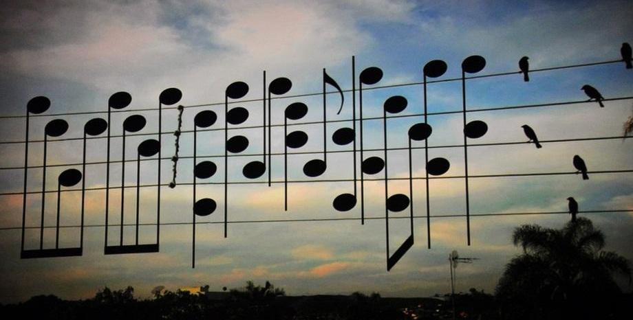 Изследват как музиката лекува