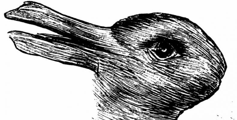 Какво виждаш на снимката - патица или заек?