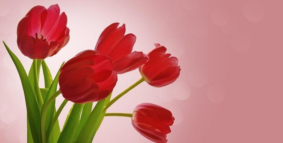 8 март! Честит празник, скъпи дами