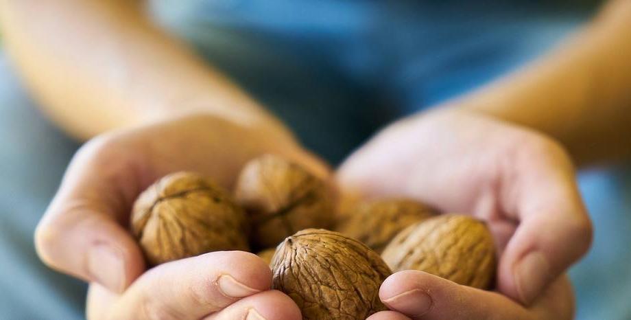 Орехът - вълшебният дар от природата за здраве и дълголетие